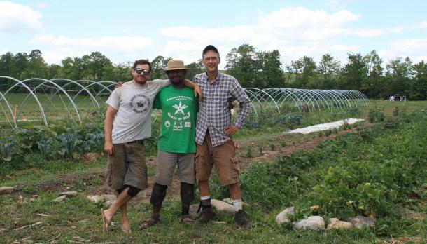 3 men wearing shorts and standing in a field