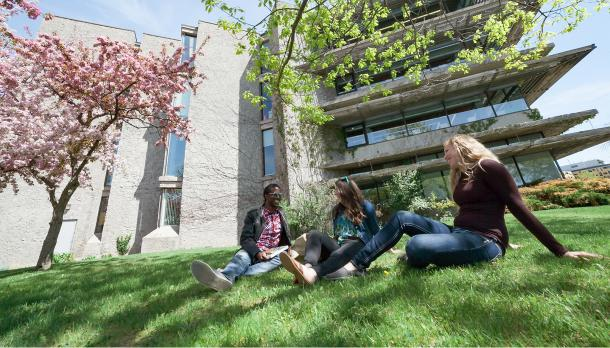 students sitting outside bata library talking