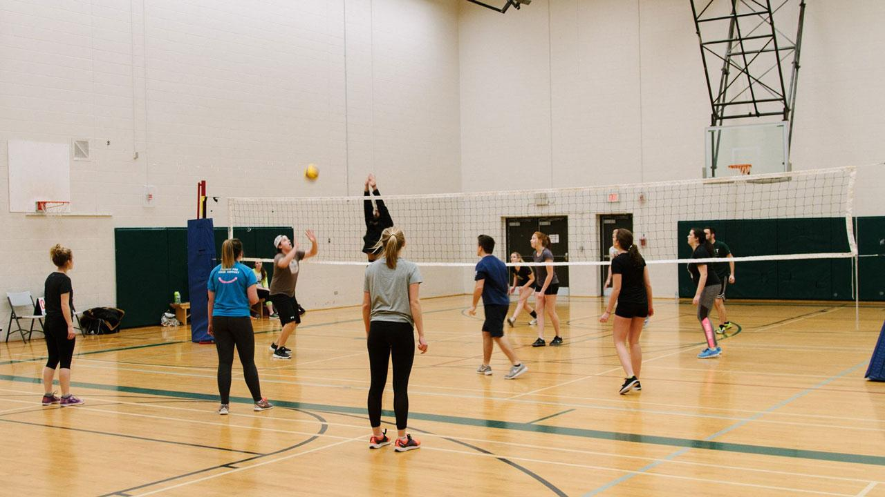 Recreational volleyball at Trent University.