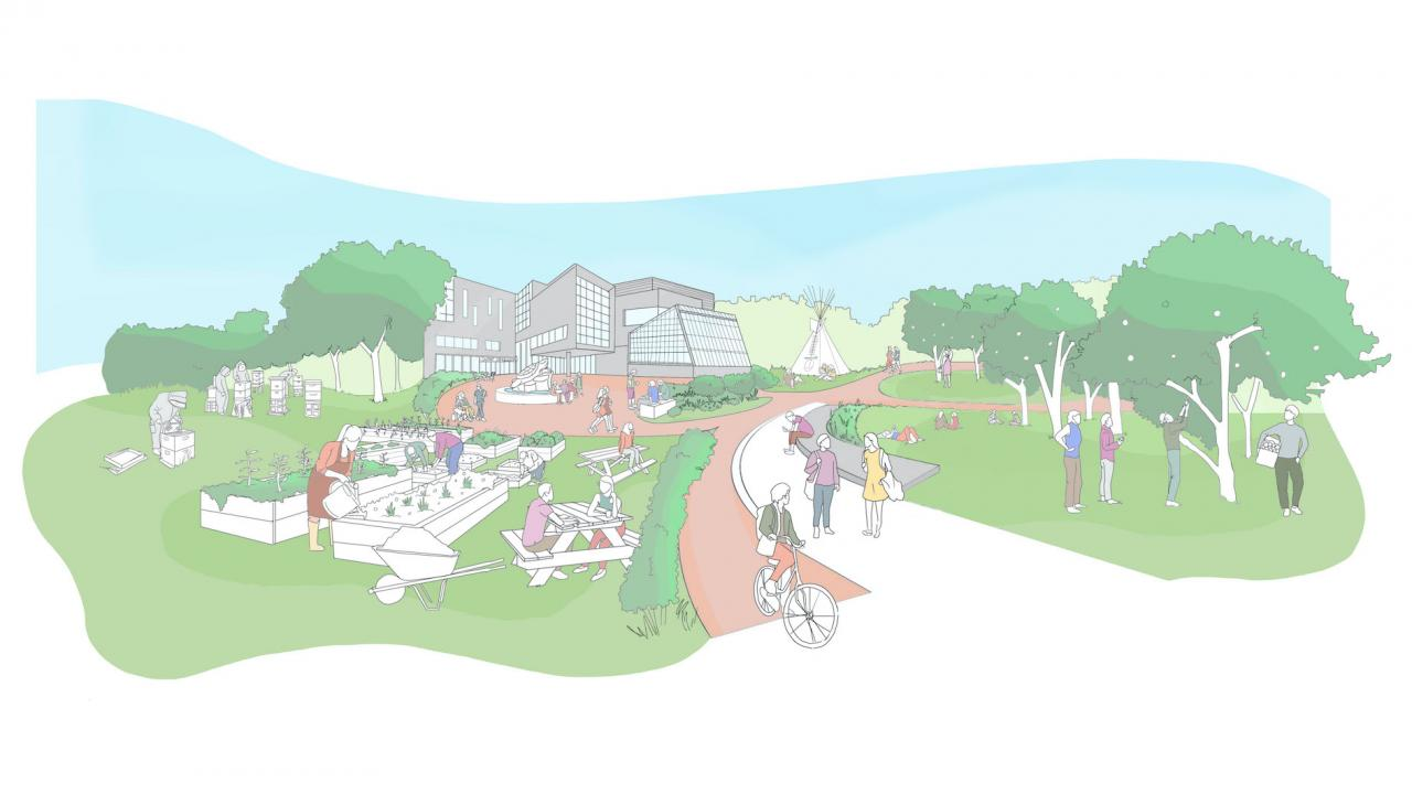 An artists representation of the productive landscapes of the Trent Lands Plan