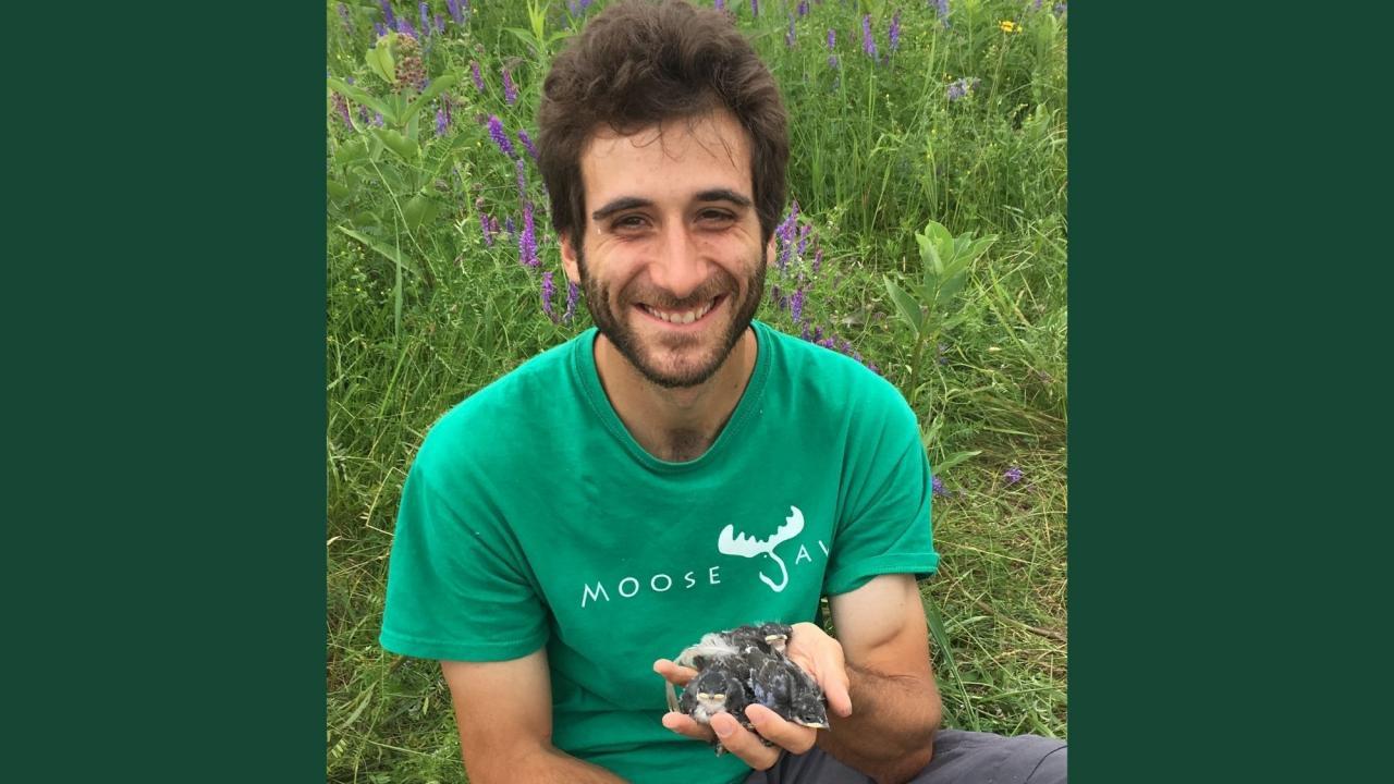 Dr. Simon Tapper holding several birds.