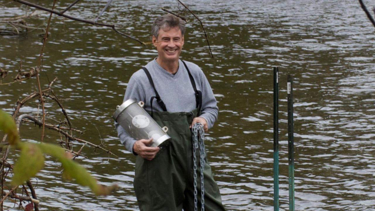 Dr. Chris Metcalfe conducting research in a river.