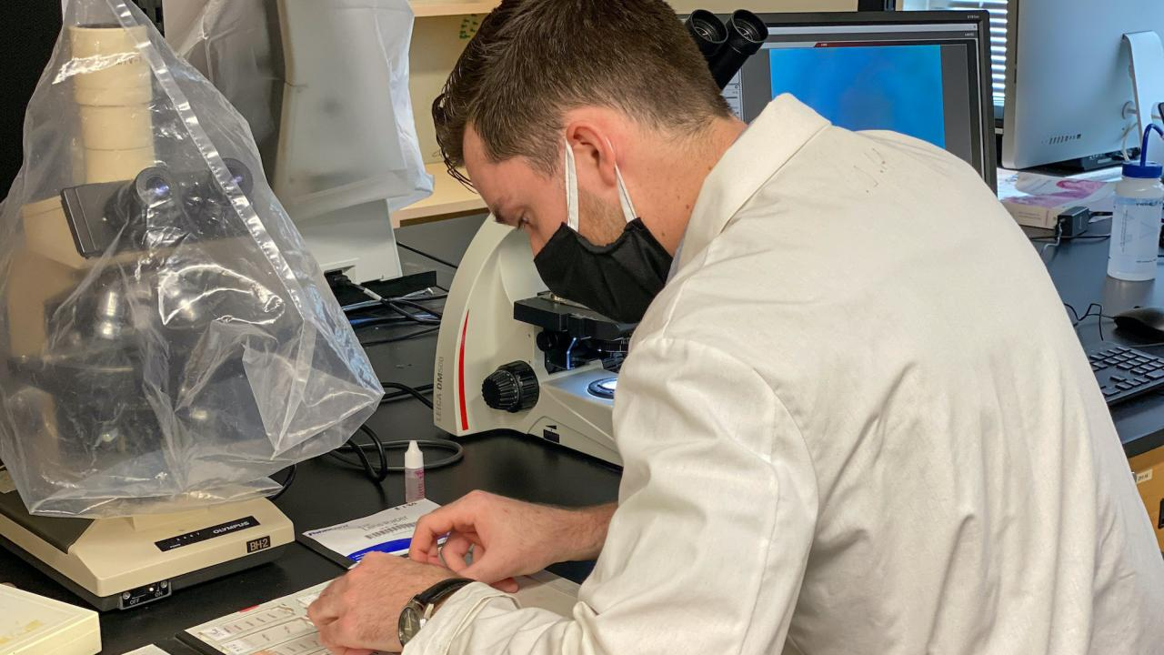 A biology student using research equipment.
