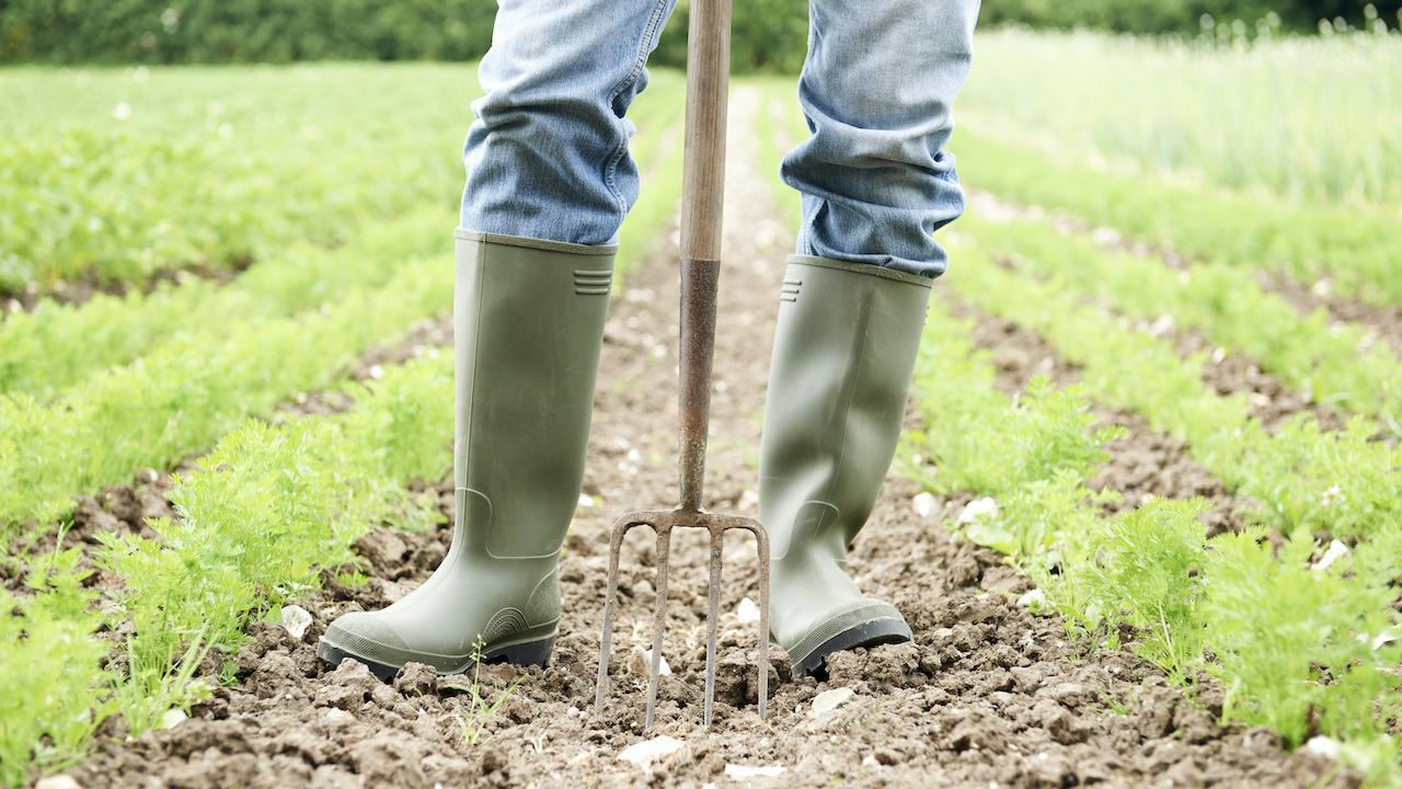 A farmer standing with a tool in a field.