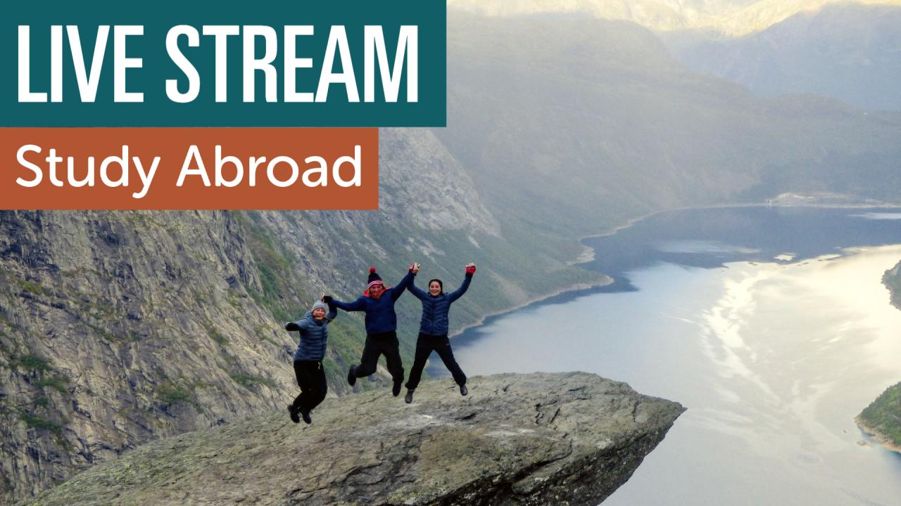 Study Abroad students jumping in excitement on a rock cliff