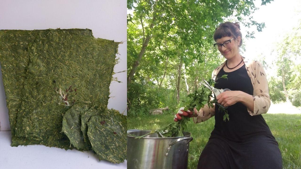 Dr. Jessica Marion Barr making biodegradable paper
