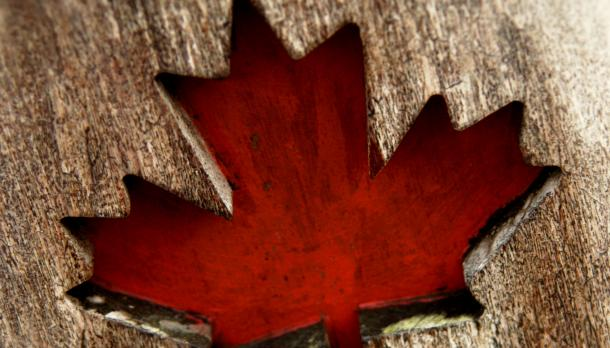 A stock image of a red maple leaf painted on wood.