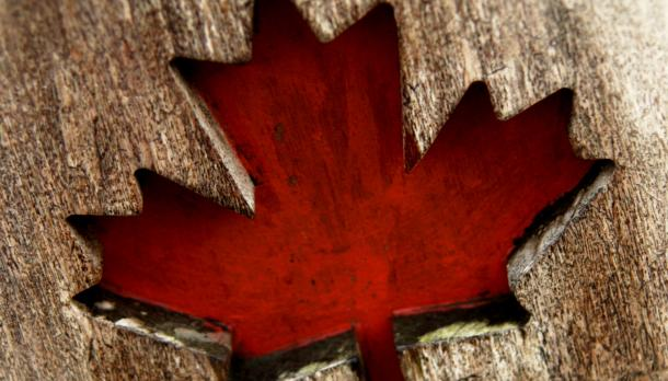 maple leaf stained red cut out of a long piece of  brown wood