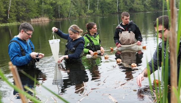 Four students and professor using nets to conduct research