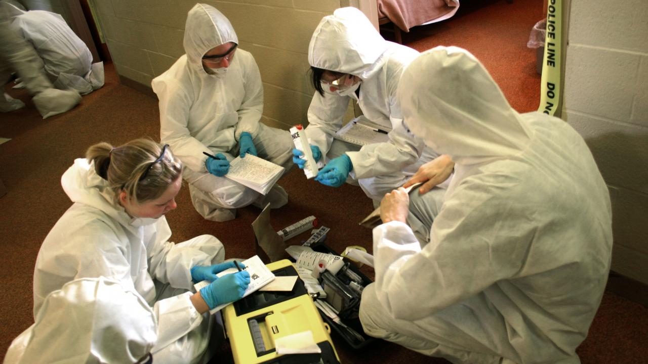 Trent University Leads Forensic Science Programming In Canada With Addition Of New Degree Programs News Trent University