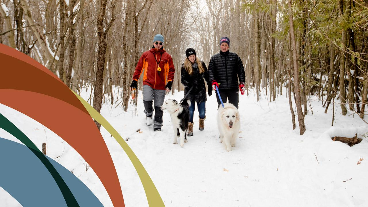 Three people walking dogs through Trent nature area.